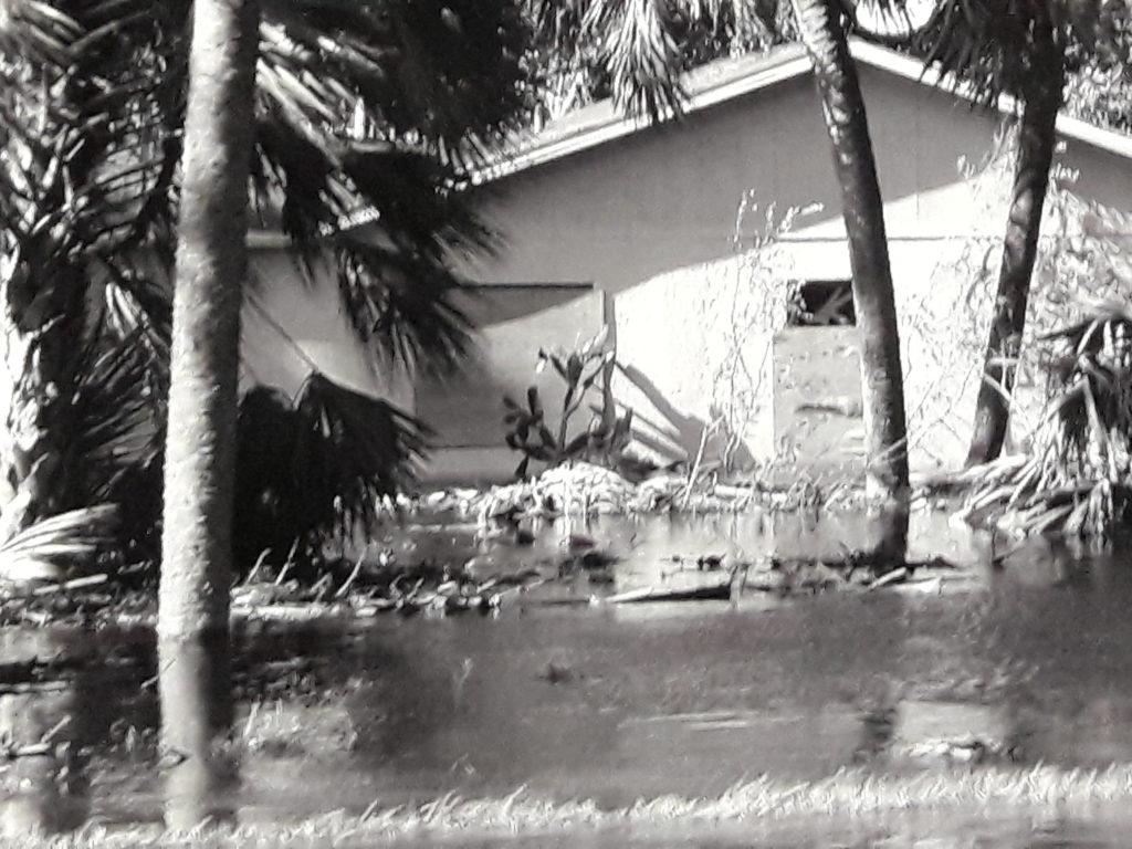 Foto dal film di Julius von Bismarck, Irma to come in earnest, 2017